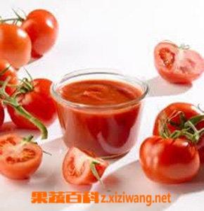 果蔬百科番茄酱