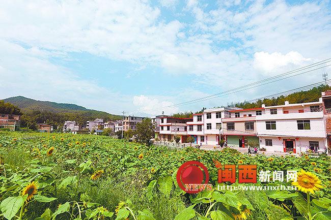 省级革命基点村新泉良坑村美了村庄富了百姓